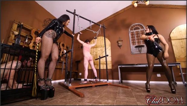 Clubdom.com- Michelle and Tangent_s Auction Slave 3: Whipped