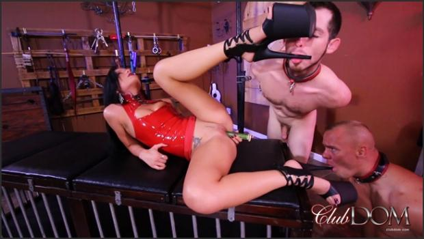 Clubdom.com- Pussy Whipped by Mistress Maria