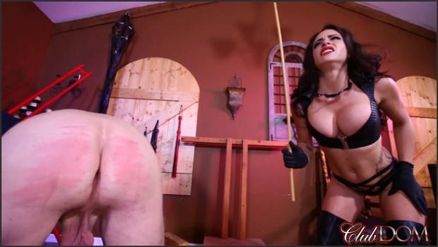 Clubdom.com- Beg For A Good Caning