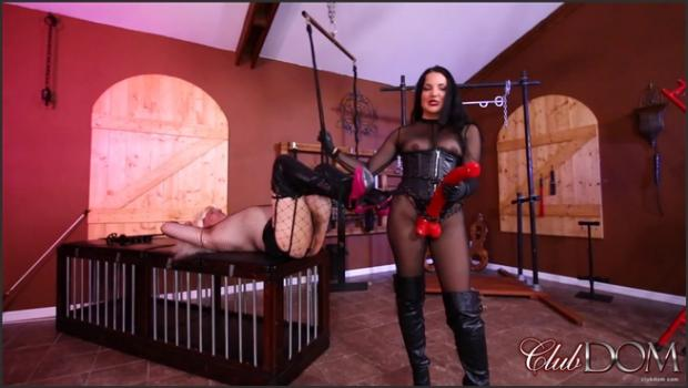 Clubdom.com- Mistress Michelle has lots of Horse-Power