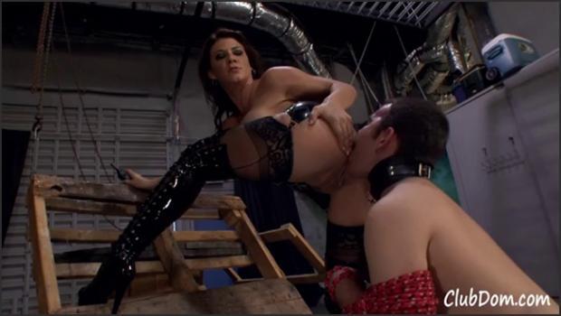 Clubdom.com- A Slave Worships Mistress_s Ass