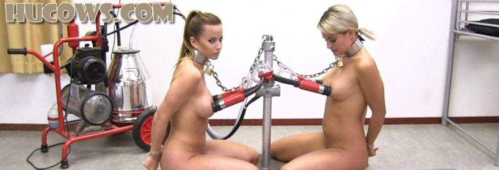 Hucows.com- Cindy Dollar and Nicole Vice - friends milked