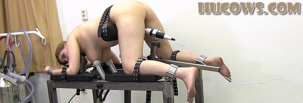 Hucows.com- Alais - extra stimulation
