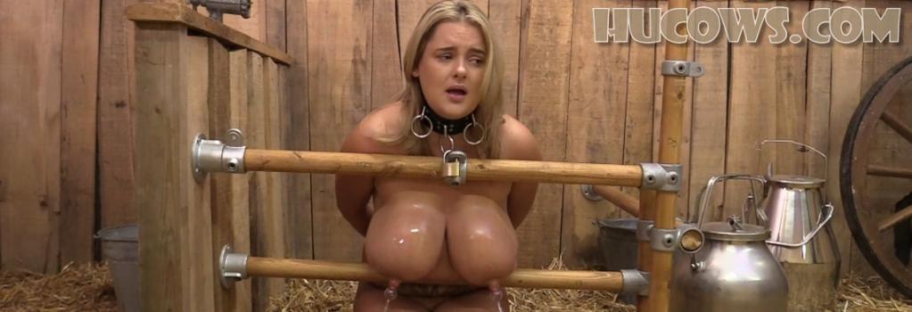 Hucows.com- Katie - nipple enlargement training